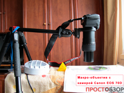 Как проводить макро-съемку объективом Canon MP-E 65mm f-2.8 1-5x Macro