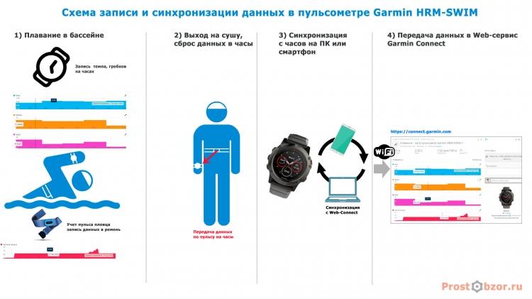 Схема работы пульсометра Garmin HRM-SWIM