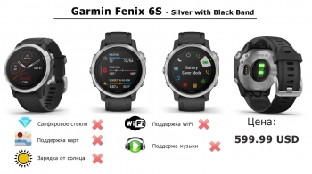 Часы Garmin fēnix 6S - Silver with Black Band