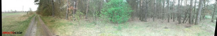 Garmin Monterra - пример фото леса