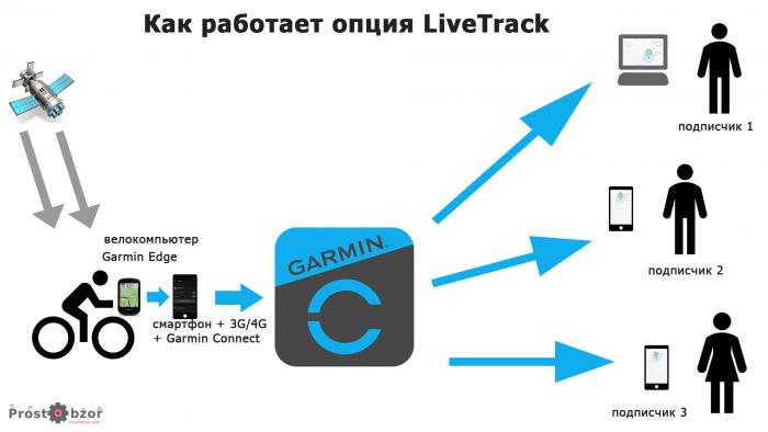 Как работает опция Garmin Live track