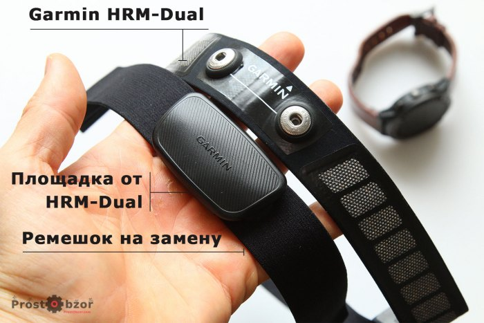 Garmin HRM Dual замена ремешка