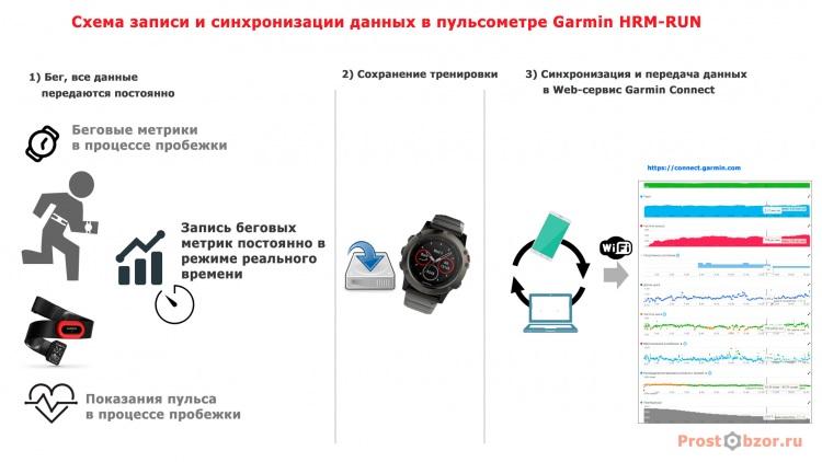 Схема работы пульсометра Garmin HRM-RUN