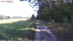 Пример фото дороги навигатором NuviCam