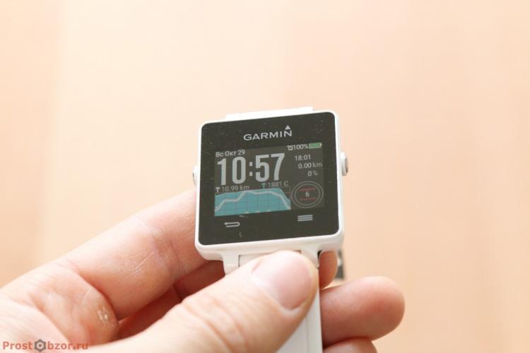 Внешний вид часов Garmin Vivoactive