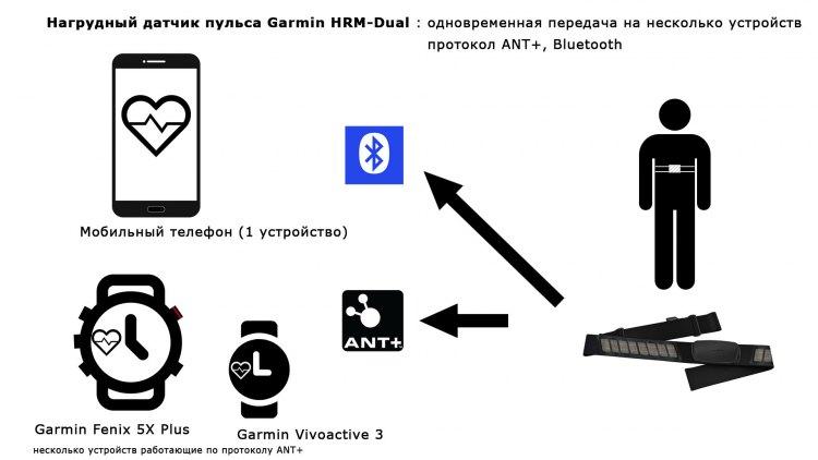 Как работает передача данных по протоколу ANT+, Bluetooth - HRM-Dual