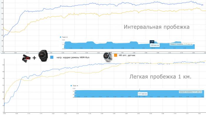 Сравнение графиков пульса HR оптического датчика и кардио ремня HRM