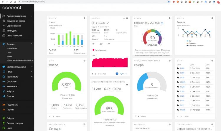 Панель данных онлайн сервиса Garmin Connect