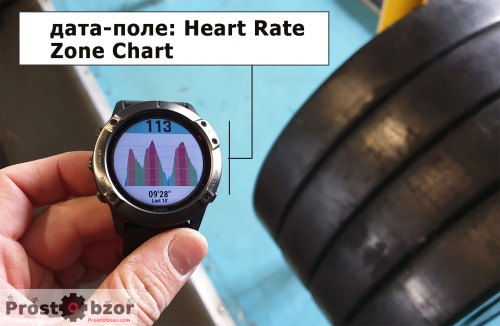 Дата-поле графика пульса Heart Rate Zone Chart
