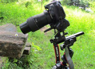 Обзор макро объектива Canon MP-E 65mm f/2.8 1-5x Macro